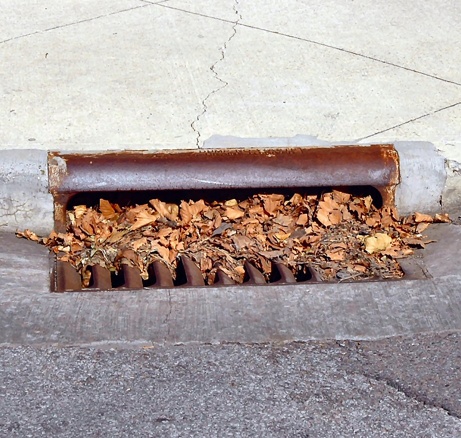 Storm drain blocked with leaves.